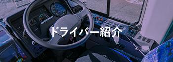 ドライバー紹介